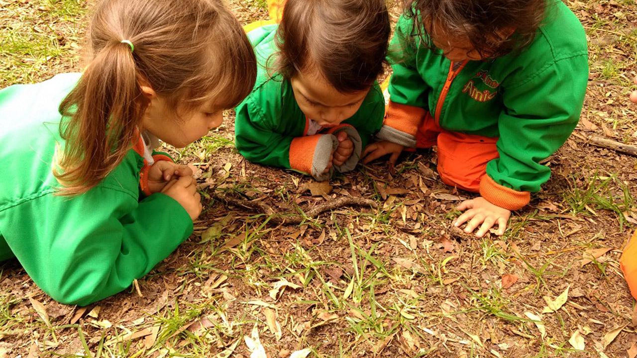 Amici Jardín Infantil