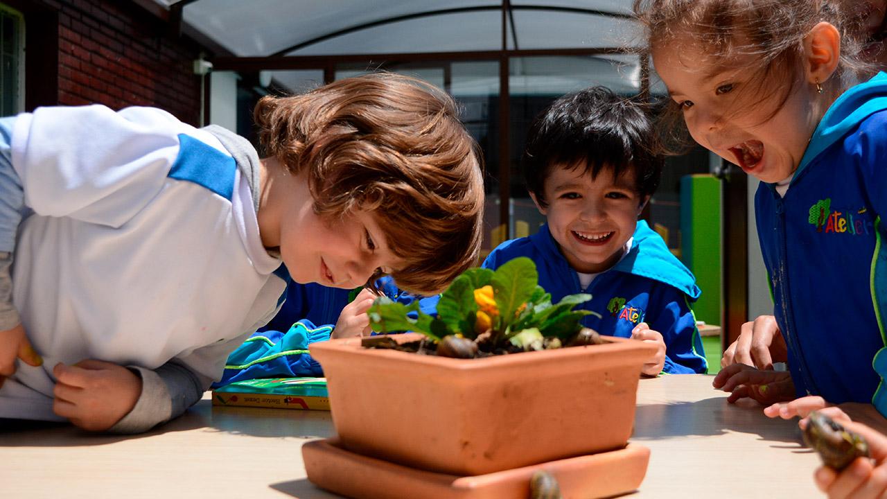 Atelier Jardín Infantil